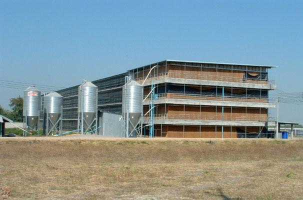 รับติดตั้ง ฝ้า-เพดาน โรงเชือด - IXL Panel